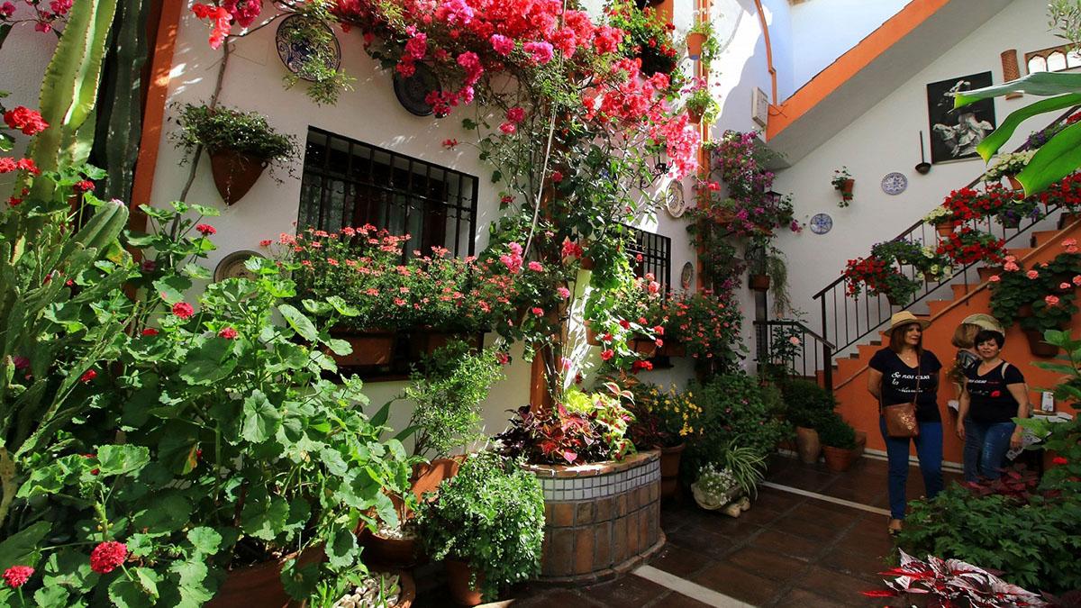 Uno de los típicos patios de Córdoba