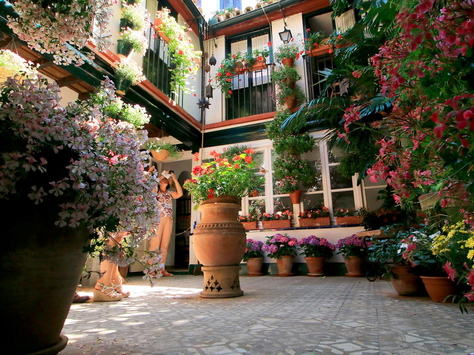Visitar los patios de Córdoba