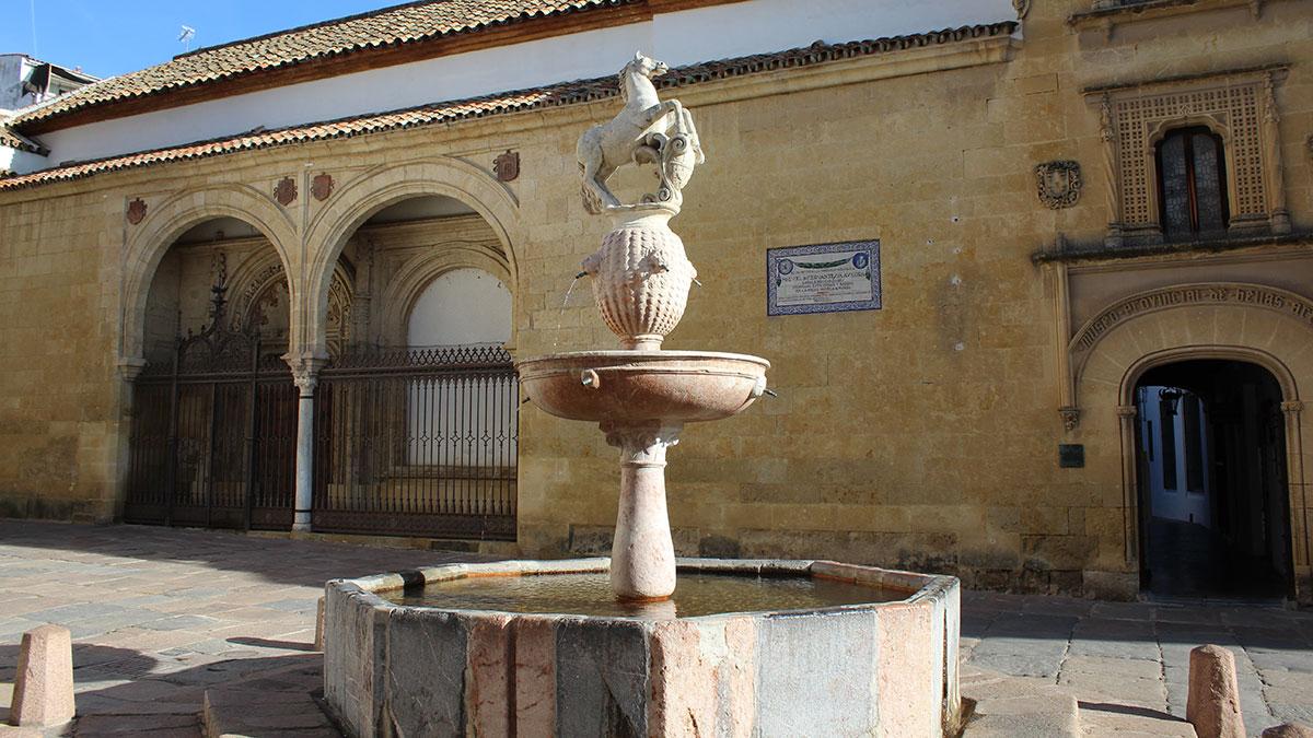 Museo de Bellas Artes en la Plaza del Potro