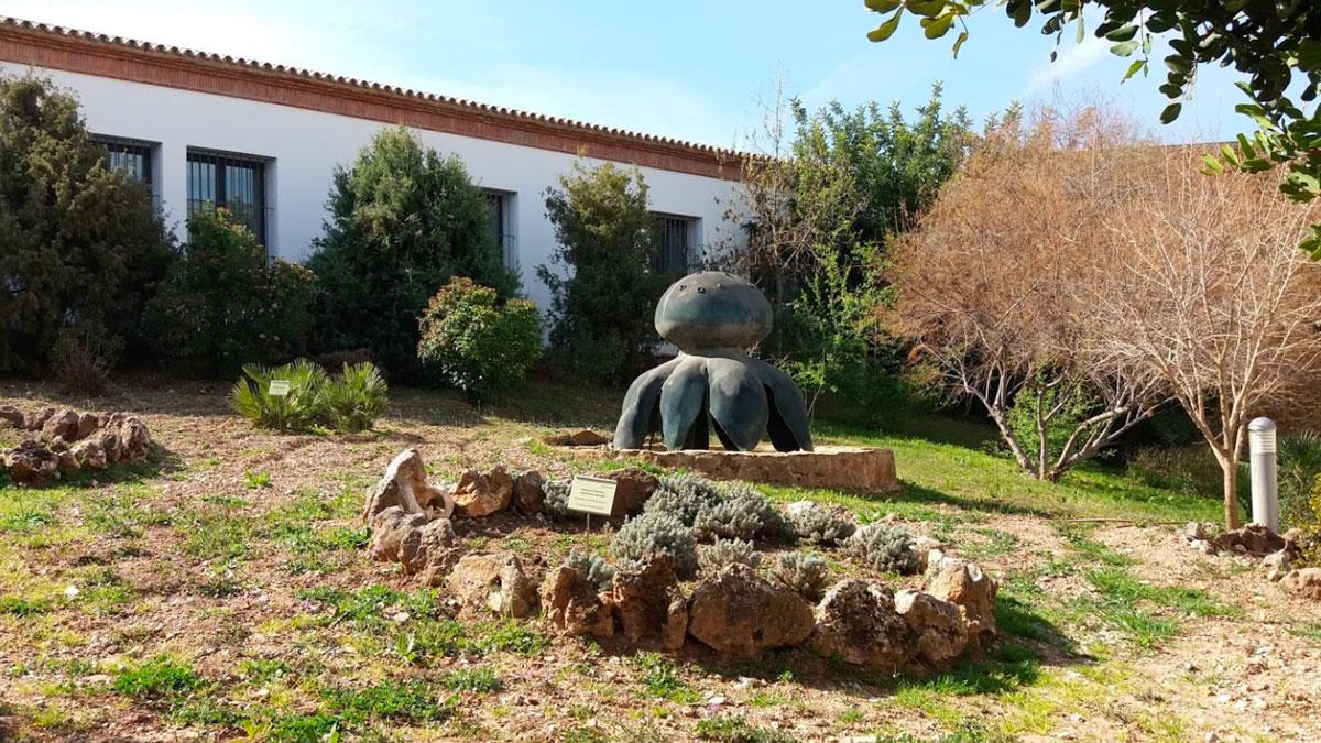 Museo de la trufa en Priego de Córdoba