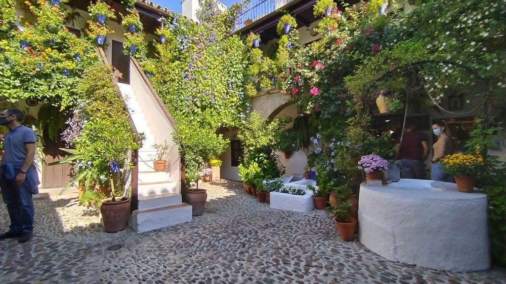 Uno de los PAtios de Córdoba más conocidos