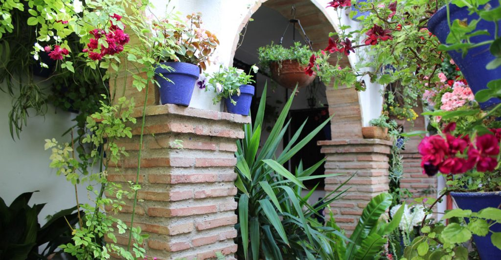 Un Patio de Córdoba en mayo