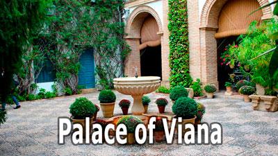 Palace of Viana